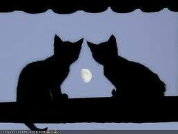 chasse au trésor de nuit